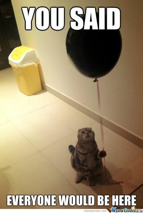 sad-birthday-cat_o_442046